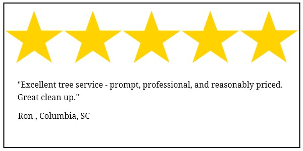 trapps tree service 5 star review